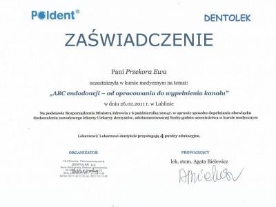 certyfikat-16-1
