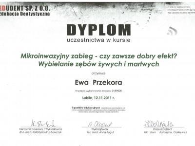 certyfikat-23-1