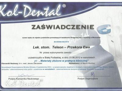 certyfikat-28-1