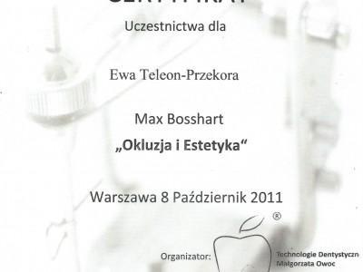 certyfikat-29-1